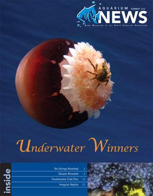 North Carolina Aquariums Magazine
